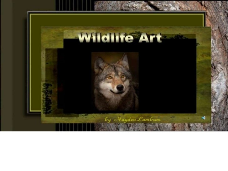 Wildlife art 1