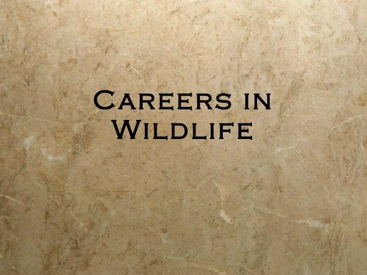 Wildlife careers powerpoint