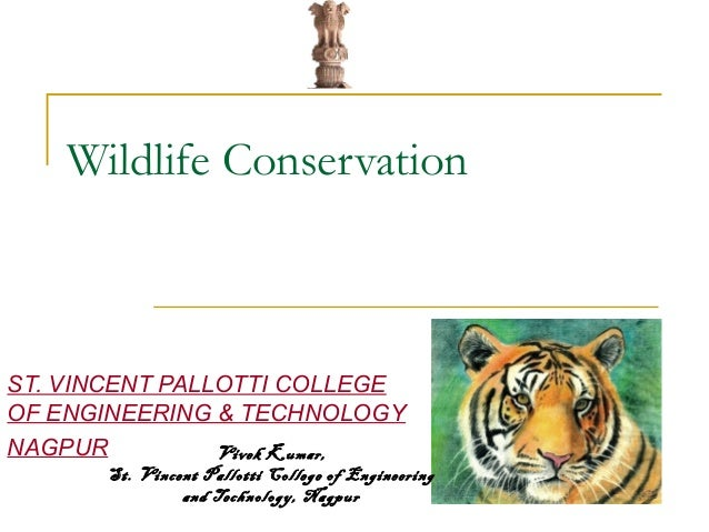 Essay On Wild Life Conservation