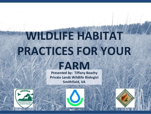 WILDLIFE HABITAT PRACTICES FOR YOUR FARMPresented by: Tiffany Beachy Private Lands Wildlife Biologist Smithfield, VA
