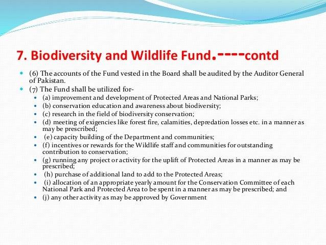 essay on wildlife protection