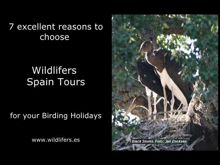 Wildlifers Spain Tours presents its Bird Tours