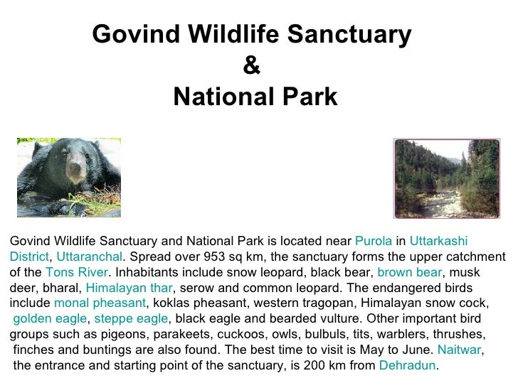 essay on wildlife sanctuaries and national parks National parks and wildlife sanctuaries are the protected areas in which human interference are not allowed  express your owns thoughts and ideas on this essay by.