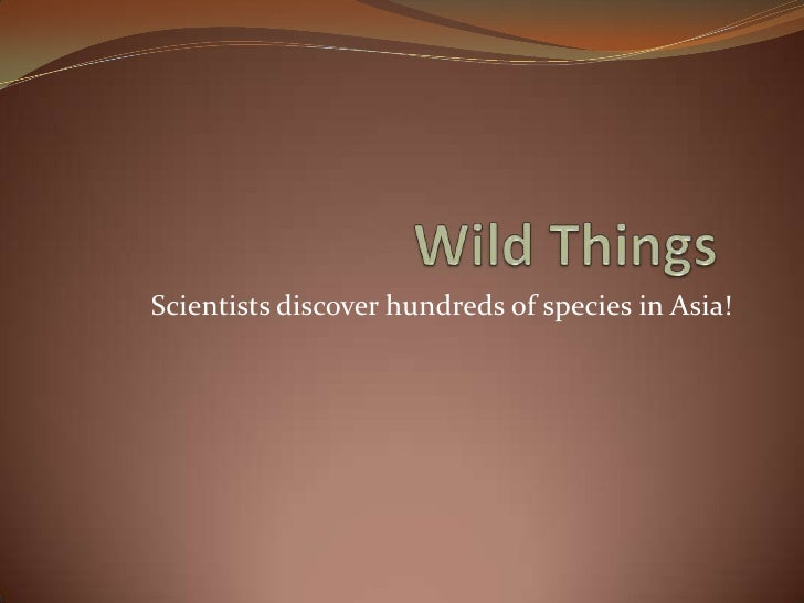Wild Things<br />Scientists discover hundreds of species in Asia!<br />