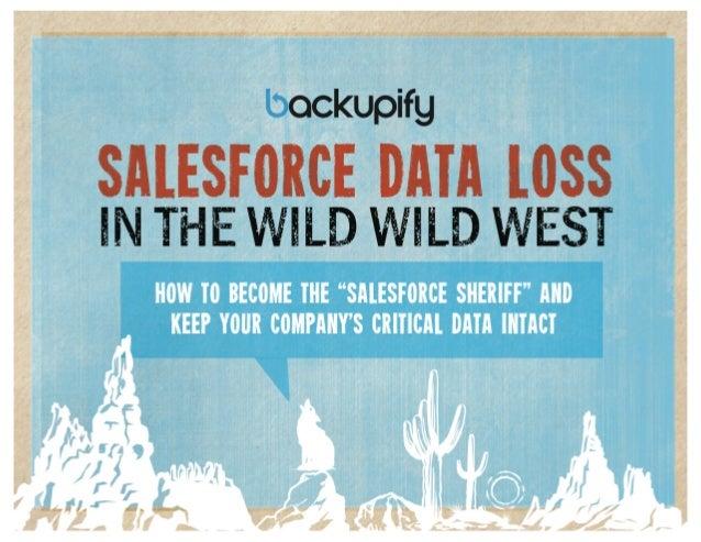 Salesforce Data Loss in the Wild Wild West