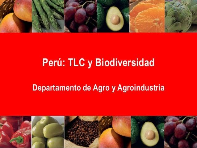 Perú: TLC y Biodiversidad Departamento de Agro y Agroindustria