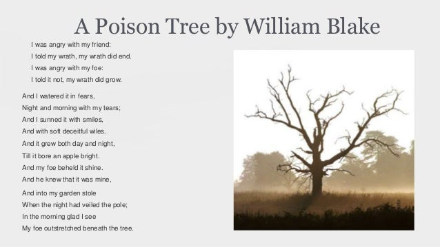 "the discussion on human weakness in william blakes poem a poison tree To understand the metaphorical sense of the poem, one must first examine the title, ""a poison tree,"" which alerts the reader that some type of metaphor will stand to dominate the poem in the second stanza, blake employs several metaphors that reflect the growing and nurturing of a tree which compare to the feeding of hate and vanity."