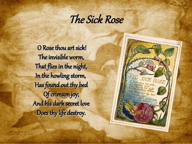 William Blake o rose