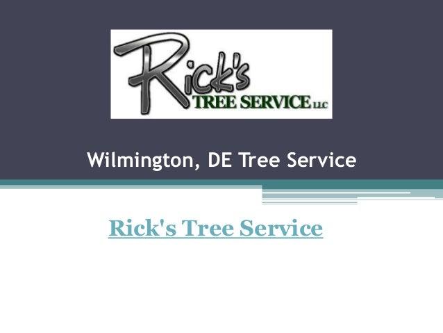 Wilmington, DE Tree Service