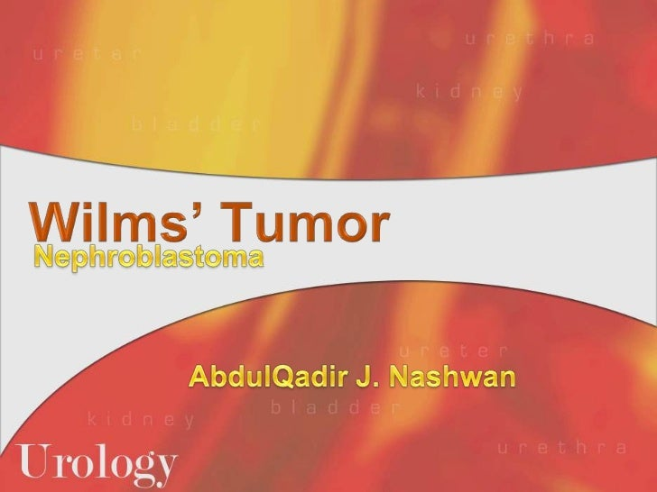 Wilms' Tumor<br />Nephroblastoma<br />AbdulQadir J. Nashwan<br />