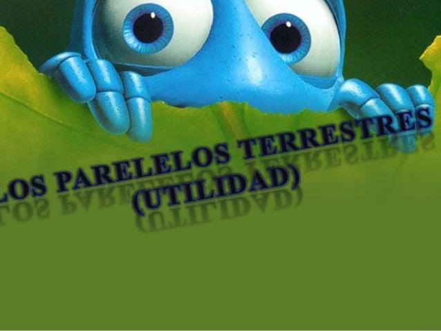 """ RECONOCER EL ORIGEN DEL CONCEPTO""""PARALELOS"""" DENTRO DEL AMBITO DE LAGEOMETRIA Y SU EXTRAPOLACION A LAGEOGRAFIA. IDENTIFI..."""