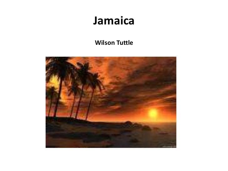 JamaicaWilson Tuttle<br />