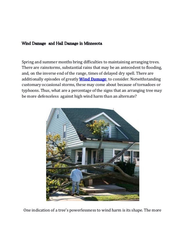 Wind Damage and Hail Damage in Minnesota Spring and summer months bring difficulties to maintaining arranging trees. There...