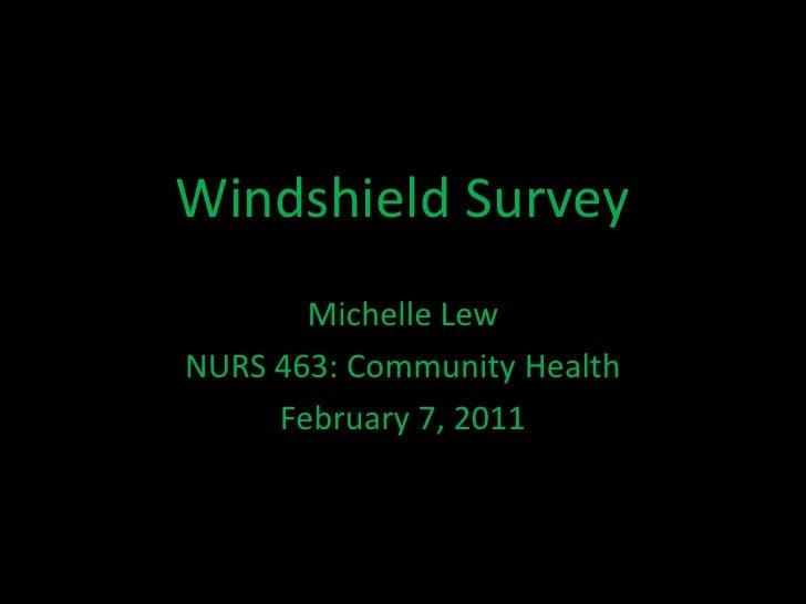 Windshield Survey<br />Michelle Lew<br />NURS 463: Community Health<br />February 7, 2011<br />