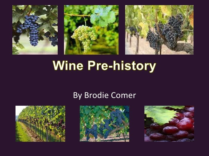 Wine Pre-history<br />By Brodie Comer<br />