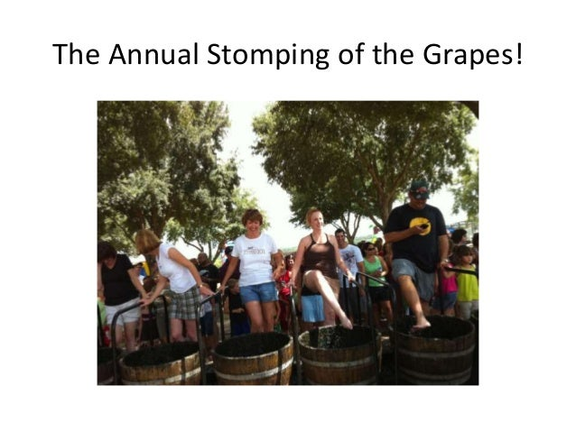 The Annual Stomping of the Grapes!