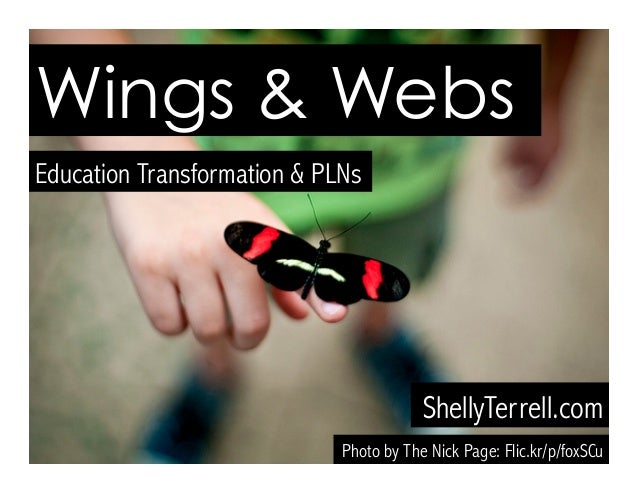 Wings and Webs: Transforming Learning Through Social Networking