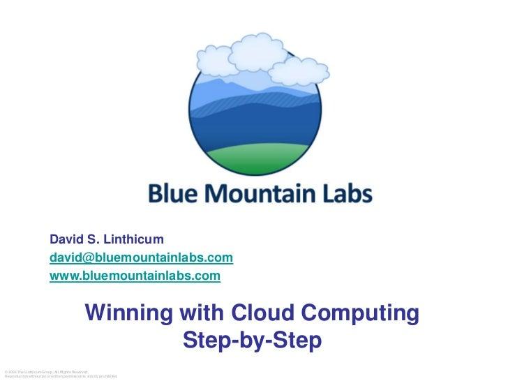 David S. Linthicum                            david@bluemountainlabs.com                            www.bluemountainlabs.c...