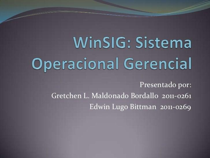 Win sig  Sistema de Informacion Gerencial para Window