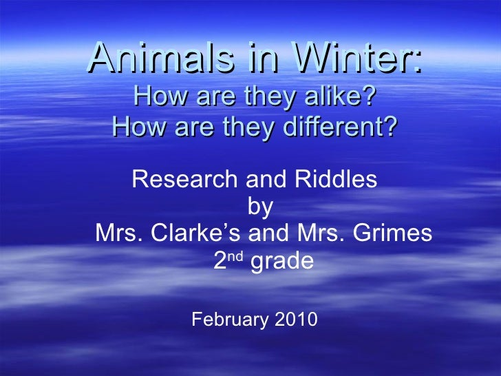 Animals in Winter: How are they alike? How are they different? Research and Riddles by  Mrs. Clarke's and Mrs. Grimes 2 nd...