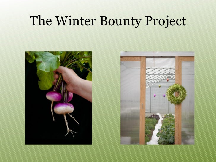 The Winter Bounty Project