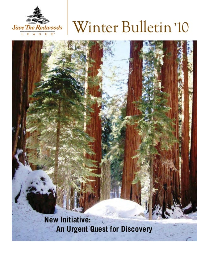 New Initiative:  An Urgent Quest for Discovery Winter Bulletin'10