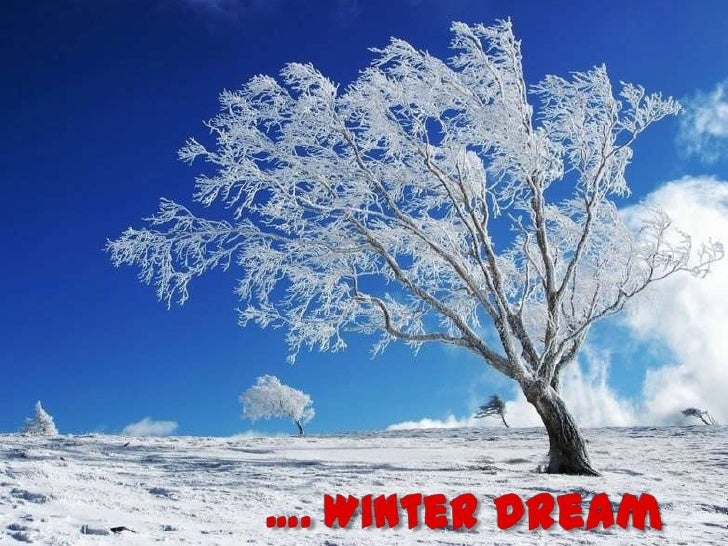 …. Winter Dream<br />