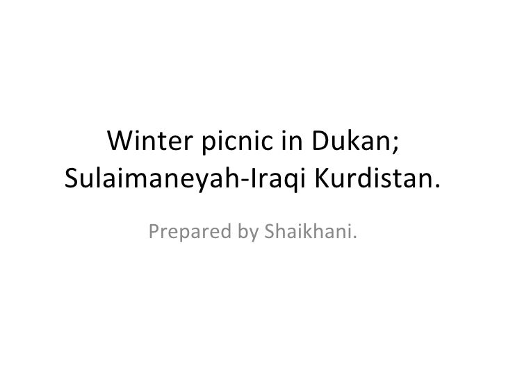 Winter picnic in Dukan; Sulaimaneyah-Iraqi Kurdistan. Prepared by Shaikhani.