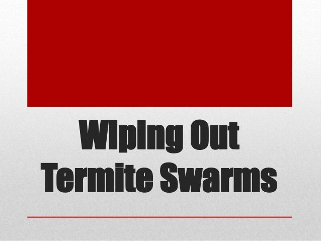 Wiping Out Termite Swarms