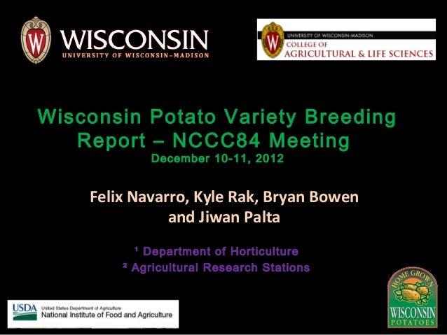 Wi potato breeding research update 2012