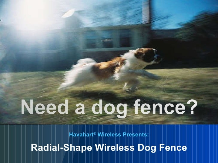 Havahart ®  Wireless Presents: Radial-Shape Wireless Dog Fence