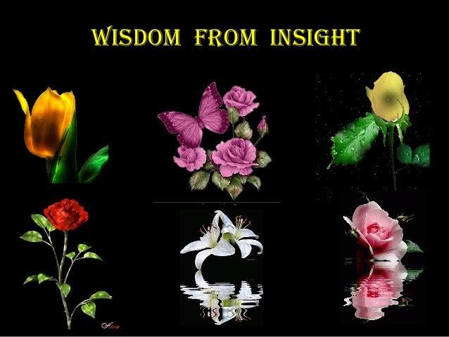 Wisdom From insight