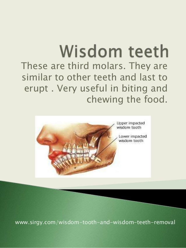 These are third molars. They are similar to other teeth and last to  erupt . Very useful in biting and                chew...