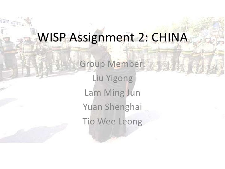 Wisp Assignment 2   China T46