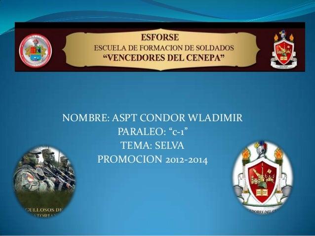 """NOMBRE: ASPT CONDOR WLADIMIR PARALEO: """"c-1"""" TEMA: SELVA PROMOCION 2012-2014"""
