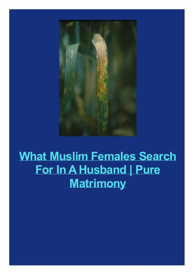 What Muslim Females Search For In A Husband | Pure Matrimony