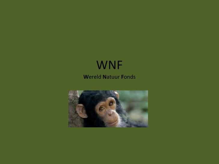WNF W ereld  N atuur  F onds