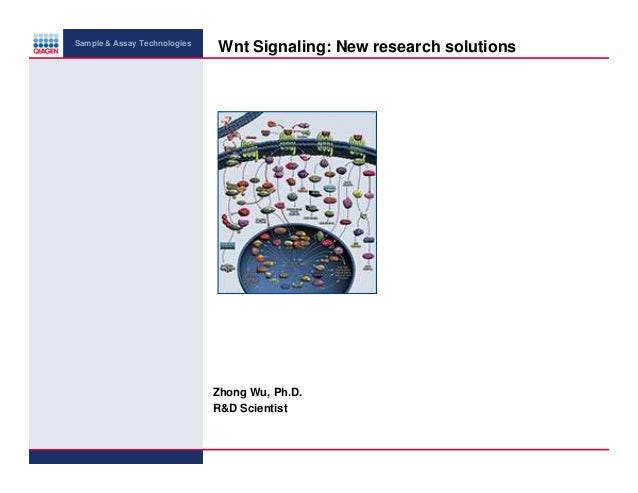 Sample & Assay Technologies  Wnt Signaling: New research solutions  Zhong Wu, Ph.D. R&D Scientist