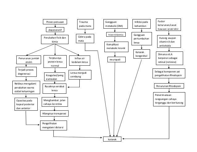 Proses penuaan  Trauma pada mata  Gangguan metabolic (DM)  Infeksi pada kehamilan  degeneratif Perubahan fisik dan kimia  ...
