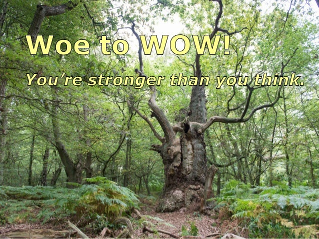 If you want to move from Woe to WOW . . .  . . . Protect your Inner Self  Defend yourself from the onslaught of outside me...