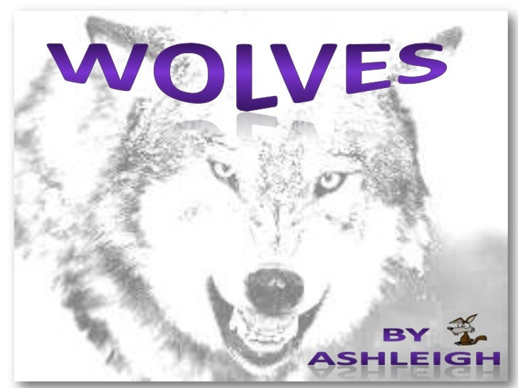 Ashleigh's Wolf project