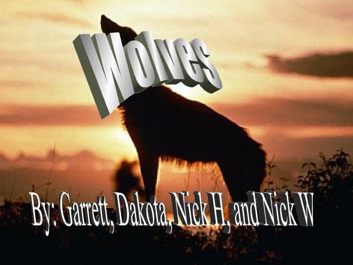 Wolves By: Garrett, Dakota, Nick H, and Nick W