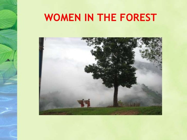 WOMEN IN THE FOREST