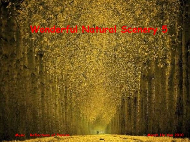 Wonderful Natural Scenery 5