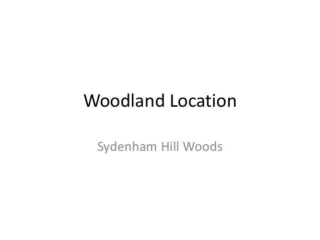 Woodland Location Sydenham Hill Woods