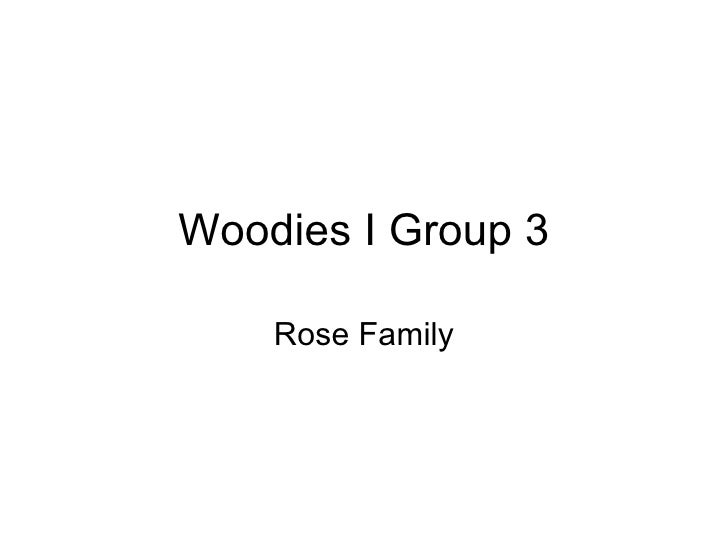 Woodies I Group 3 Rose Family