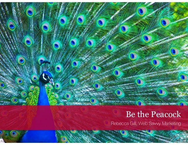Be the Peacock Rebecca Gill, Web Savvy Marketing