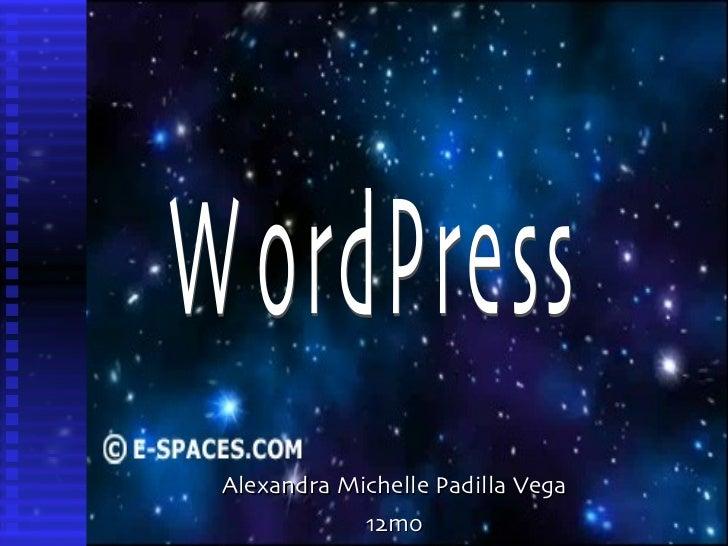 Alexandra Michelle Padilla Vega 12mo WordPress
