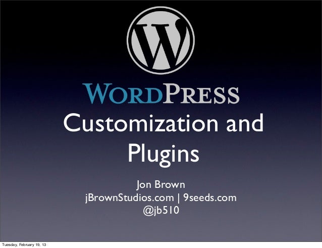 Word press customiztion and plugins feb 2012