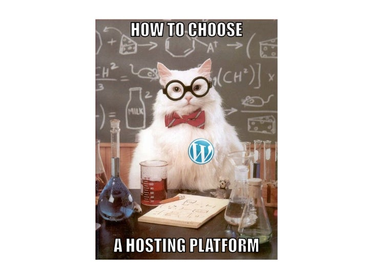 Choosing a WordPress Hosting Platform